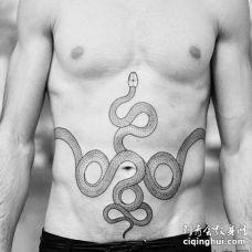 简约 腹部 蛇