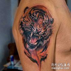 水彩大臂老虎纹身图案