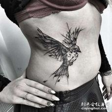 线条侧腰鸟纹身图案