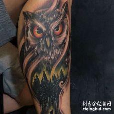 写实小腿猫头鹰纹身图案