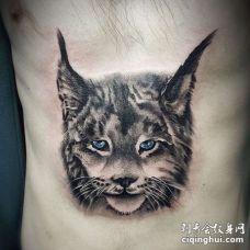 写实侧腰猫纹身图案