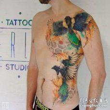 水彩侧腰鸟纹身图案