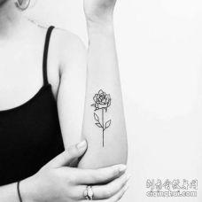 小清新小臂玫瑰纹身图案