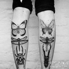 点线小腿蝴蝶蜻蜓昆虫纹身图案