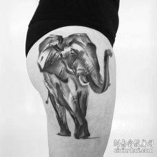 点线大腿大象纹身图案