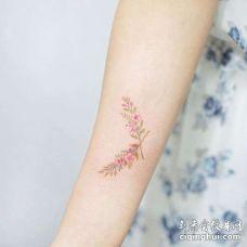 水彩小臂花卉纹身图案