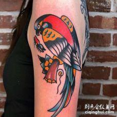 Old School大臂鹦鹉纹身图案