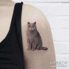 大臂猫纹身图案