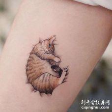 小清新大腿猫纹身图案