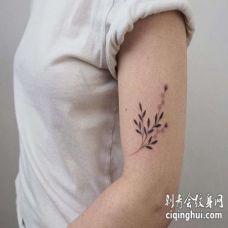 点刺大臂叶子纹身图案