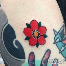 日式大臂樱花纹身图案