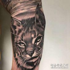 写实小臂老虎纹身图案