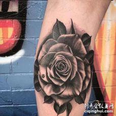 写实小腿玫瑰纹身图案