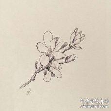 小清新小臂花卉纹身图案
