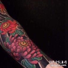 日式小臂菊花纹身图案