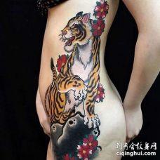 新传统侧腰老虎纹身图案