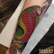 小臂包围new school蛇