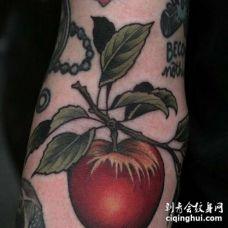 小臂内侧写实西红柿