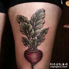 大腿前侧写实萝卜