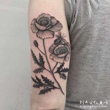 大臂外侧点刺花与蜜蜂