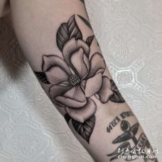 手臂内侧点刺花朵