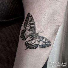 手臂点刺蝴蝶