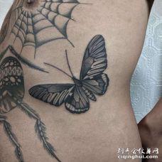 腰侧点刺蝴蝶
