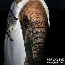 写实大臂大象纹身图案