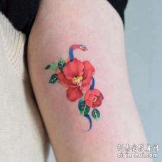 小清新小臂蛇花卉纹身图案