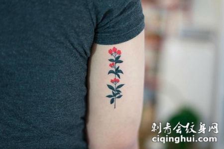 女生手臂上彩绘水彩素描创意精美花朵纹身图片