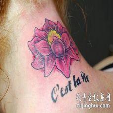 脖子彩色紫莲花法文纹身图案