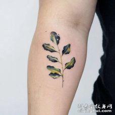 清新的小花草女神专属纹身图