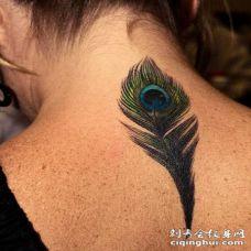 女生后颈部孔雀羽毛纹身图案