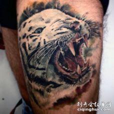 大腿写实风格白虎纹身图案