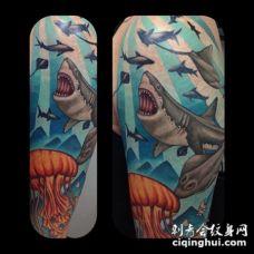 彩色海洋鲨鱼和水母纹身图案