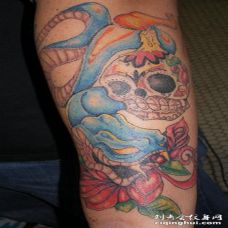 手臂骷髅和蓝色的蛇纹身图案