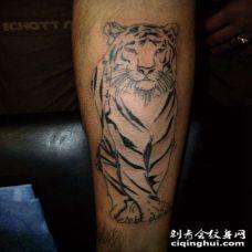 小臂罕见的白虎个性纹身图案
