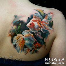 背部写实风格逼真的彩色小金鱼纹身图案