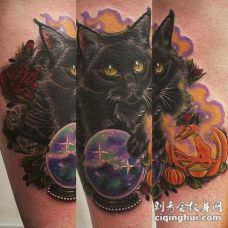 小腿丰富多彩的漂亮黑猫和魔法球纹身图案