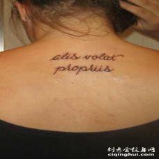 背部拉丁文字母简约纹身图案