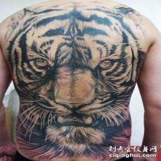 背部可爱的老虎头部白色纹身图案