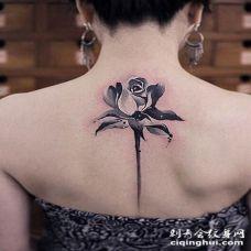 背部精美写实的玫瑰黑白纹身图案
