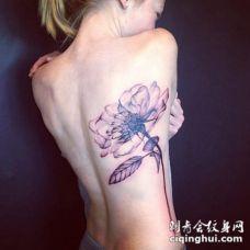 背部天然外观彩色美丽的花朵纹身图案