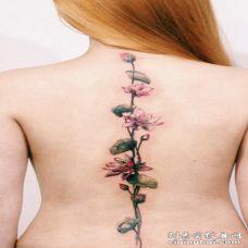 非常漂亮的粉红色花朵背部纹身图案