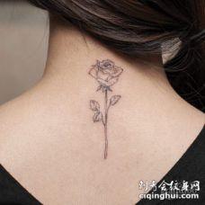 肩部温柔苍白的黑色线条玫瑰花纹身图案