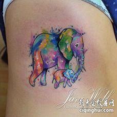 侧肋彩色泼墨的大象母亲和宝宝小象纹身图案