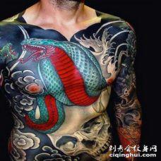 腹部和胸部彩绘眼镜蛇和骷髅纹身图案