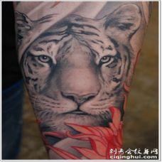 白色虎头和红色花朵手臂纹身图案