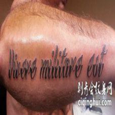 手臂黑色和灰色的拉丁文字母纹身图案