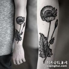 old school手臂黑色的罂粟花纹身图案